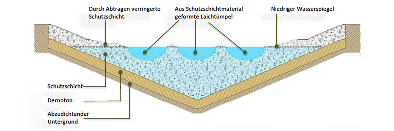 Grafische Darstellung Aufbau Amphibienlaichgewässer