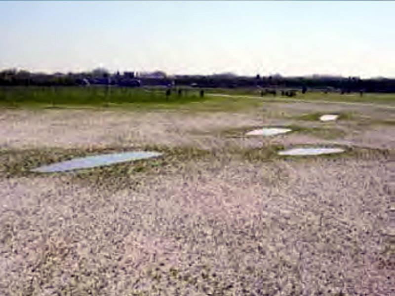 Anlage von Laichgewässern mit DERNOTON